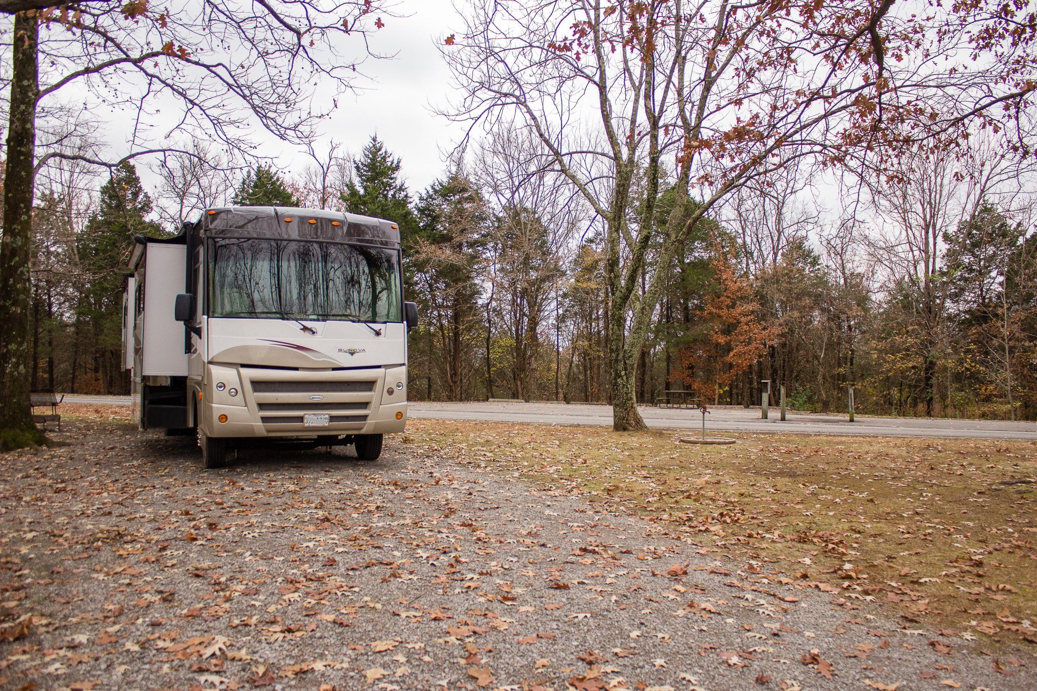 Ferne Clyffe State Park State Parks Campground Reviews Park