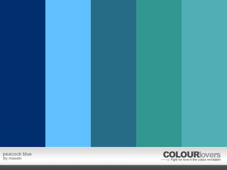 Exceptional 17 Best Images About Paint Colors:Teal/Peacock/Ocean Accent Wall .