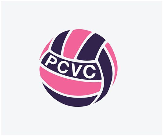 Players Choice Volleyball Logo Portfolio Web Design Freelance Web Design Portfolio Design
