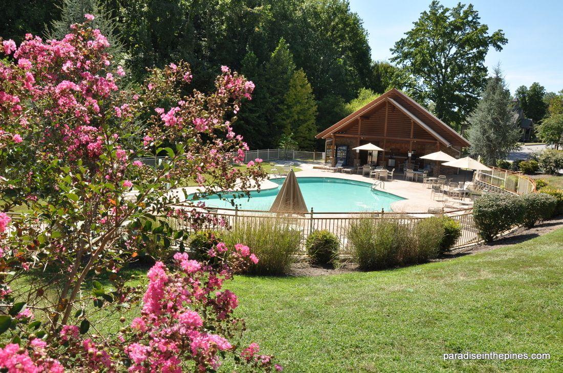 Pool - ParadiseinthePines.com