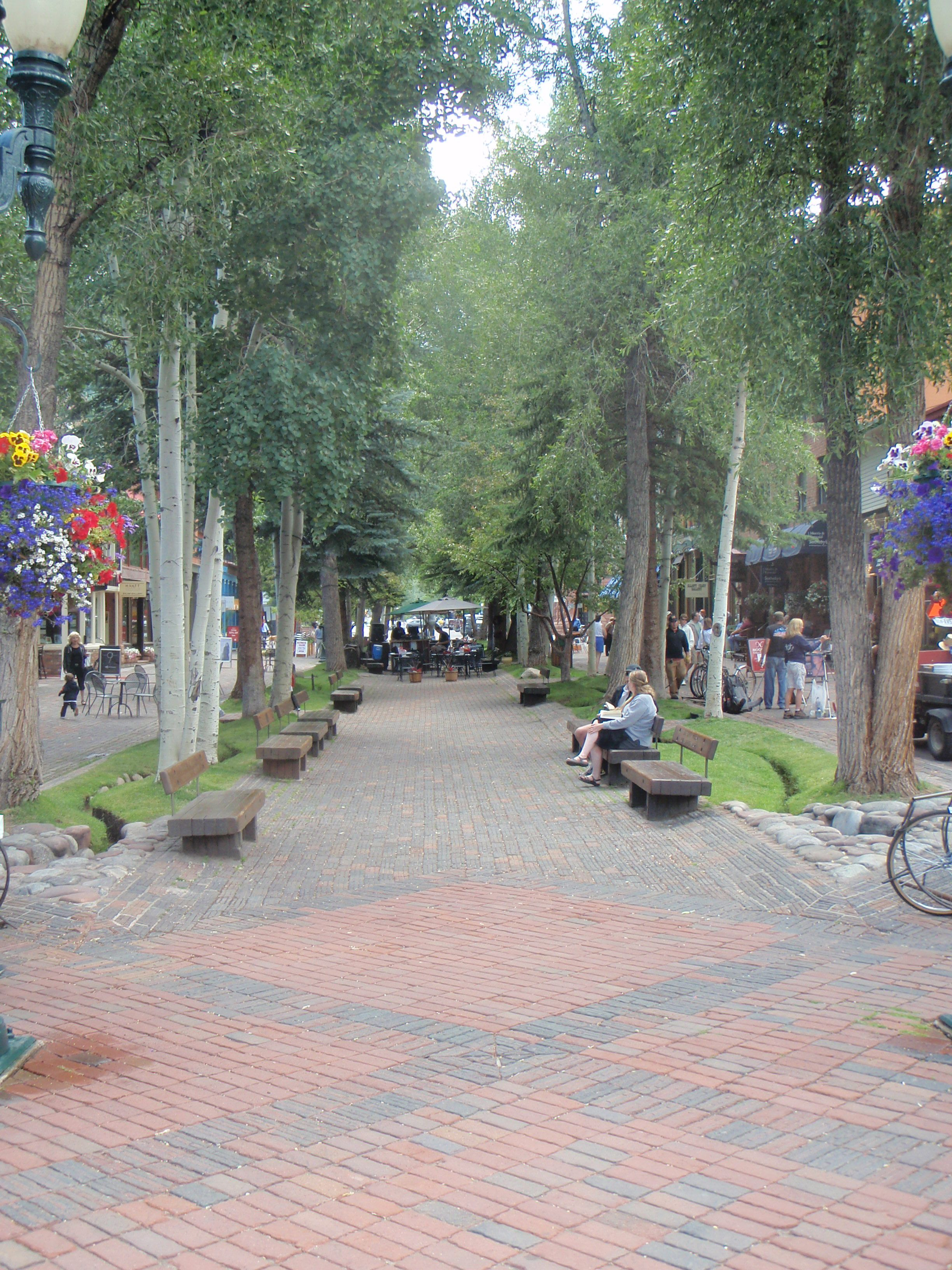 Aspen - stream / bioswale features in back of seating | Rainwater ...