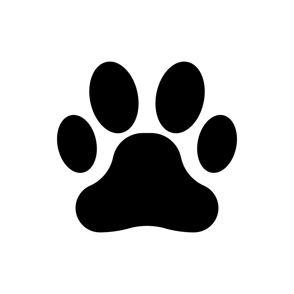 Black Paw Print Icon Isolated Dog Cat Icon Dog Icon Funny Cat Faces Lion prints in the sand. black paw print icon isolated dog cat