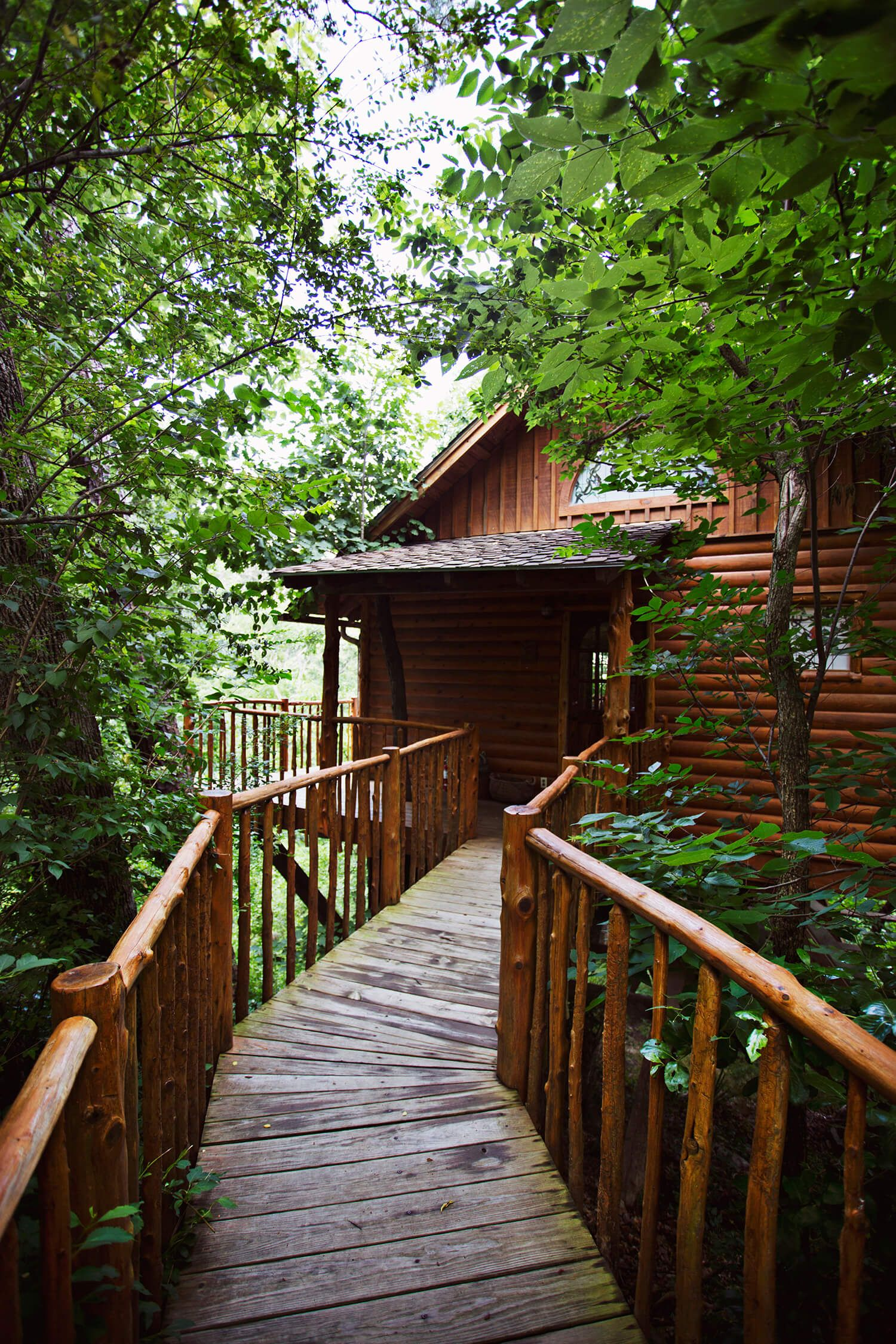 archives friendly bow pet cabins in category oklahoma cabin hideaway beavers broken treehouse