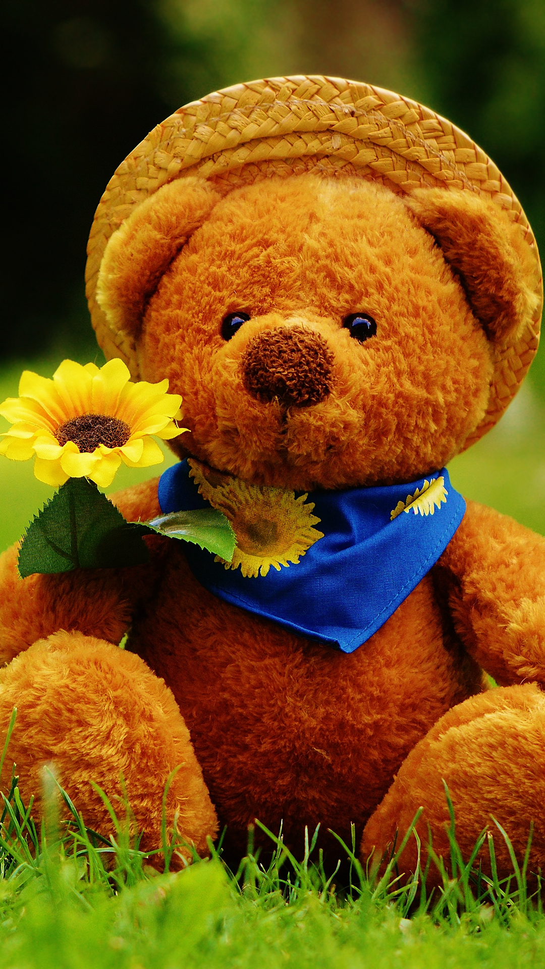 Cute Garden Teddy Bear iPhone Wallpapers. Tap to see more