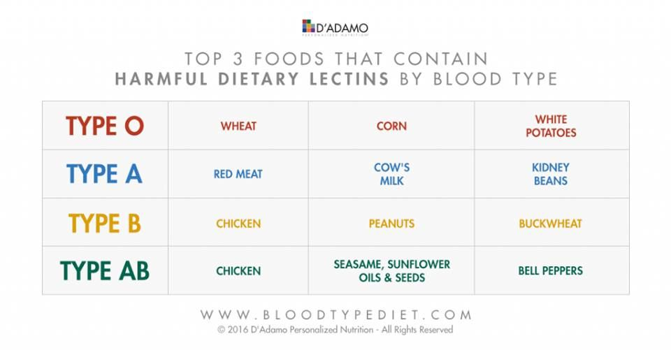 3. blood type diet