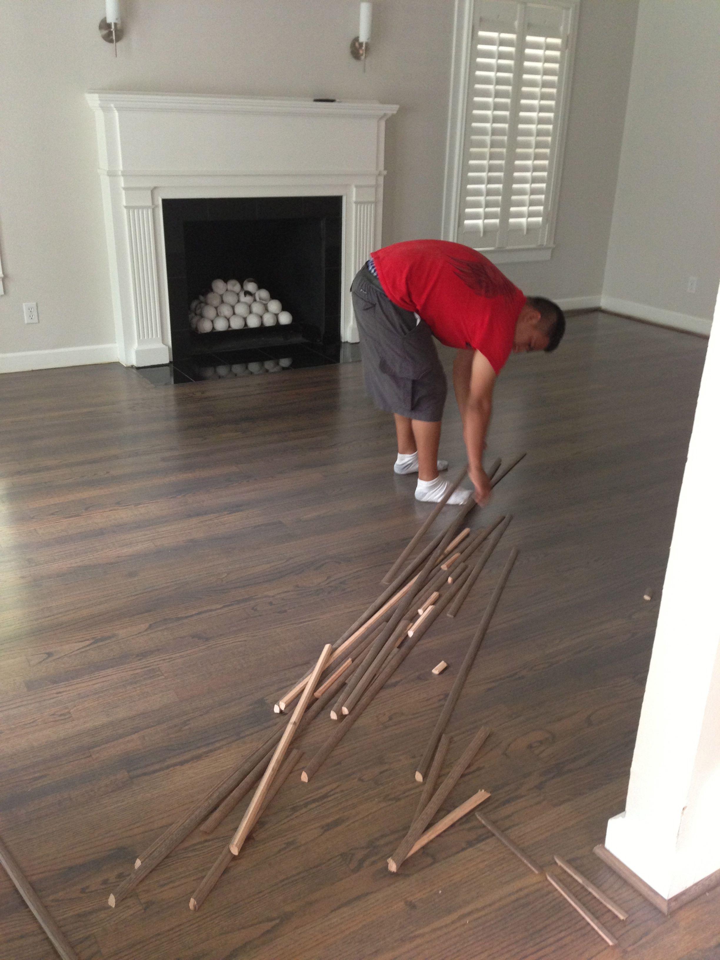 Ebony Beechwood Hardwood Floors Flooring Craftsman House