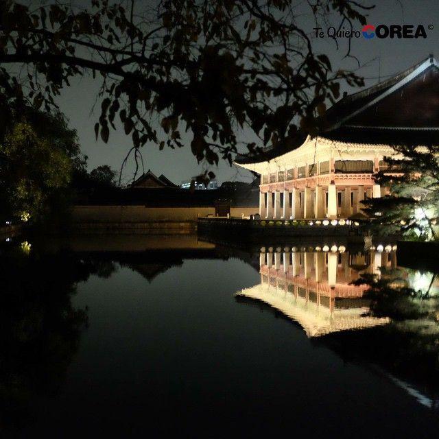 Korea at night! I love you Korea!  #tequierocorea #Corea #korea #seoul #seul #temple #palace #palacio #gyeongbokgung #tree #arbol #night #noche #밤 #서울 #한국 #나무 #경복궁 #peace #calm #paz #asia