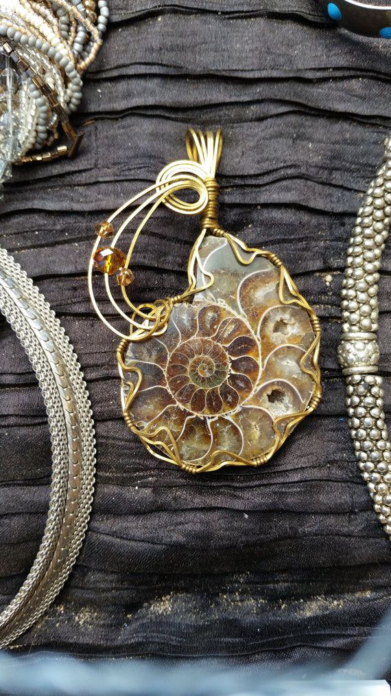 Wire wrapped ammonite pendant jewelry ammoliteshells wire wrapped ammonite pendant aloadofball Image collections