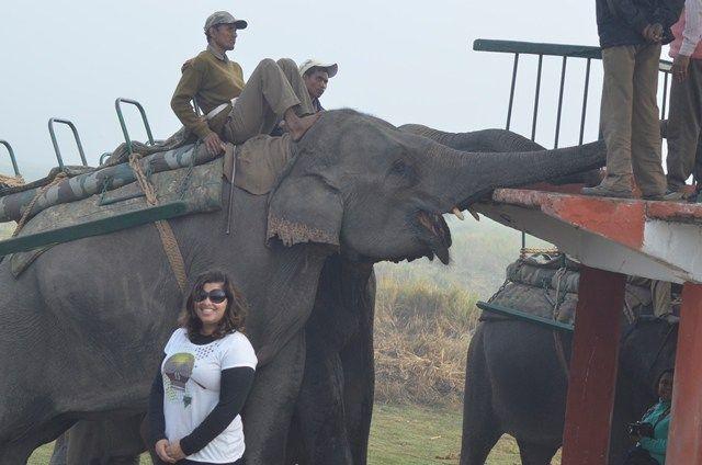 Kaziranga National Park  http://wanderingpassport.com/?p=161