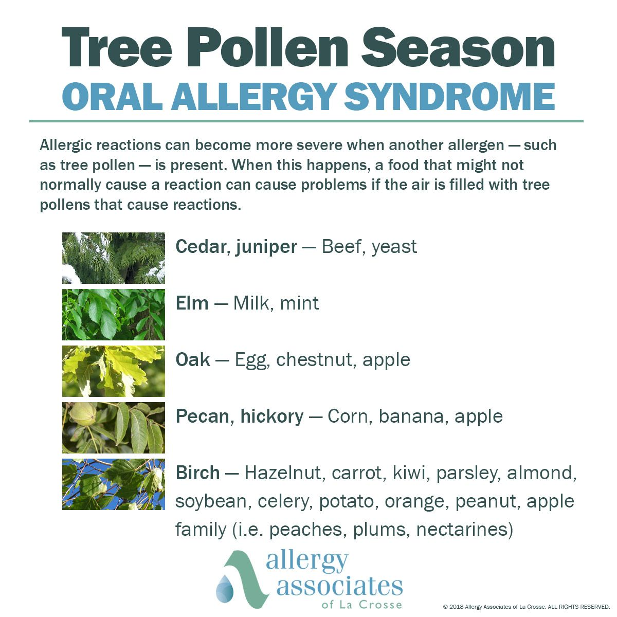 Allergy Syndrome Hens When People With Tree Eat The Listed Foods And Experience A Local Reaction Learn More On Our Website