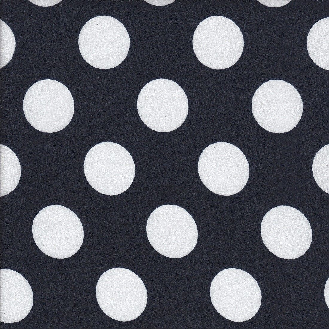 Dots - Navy - Stenzo Poplin