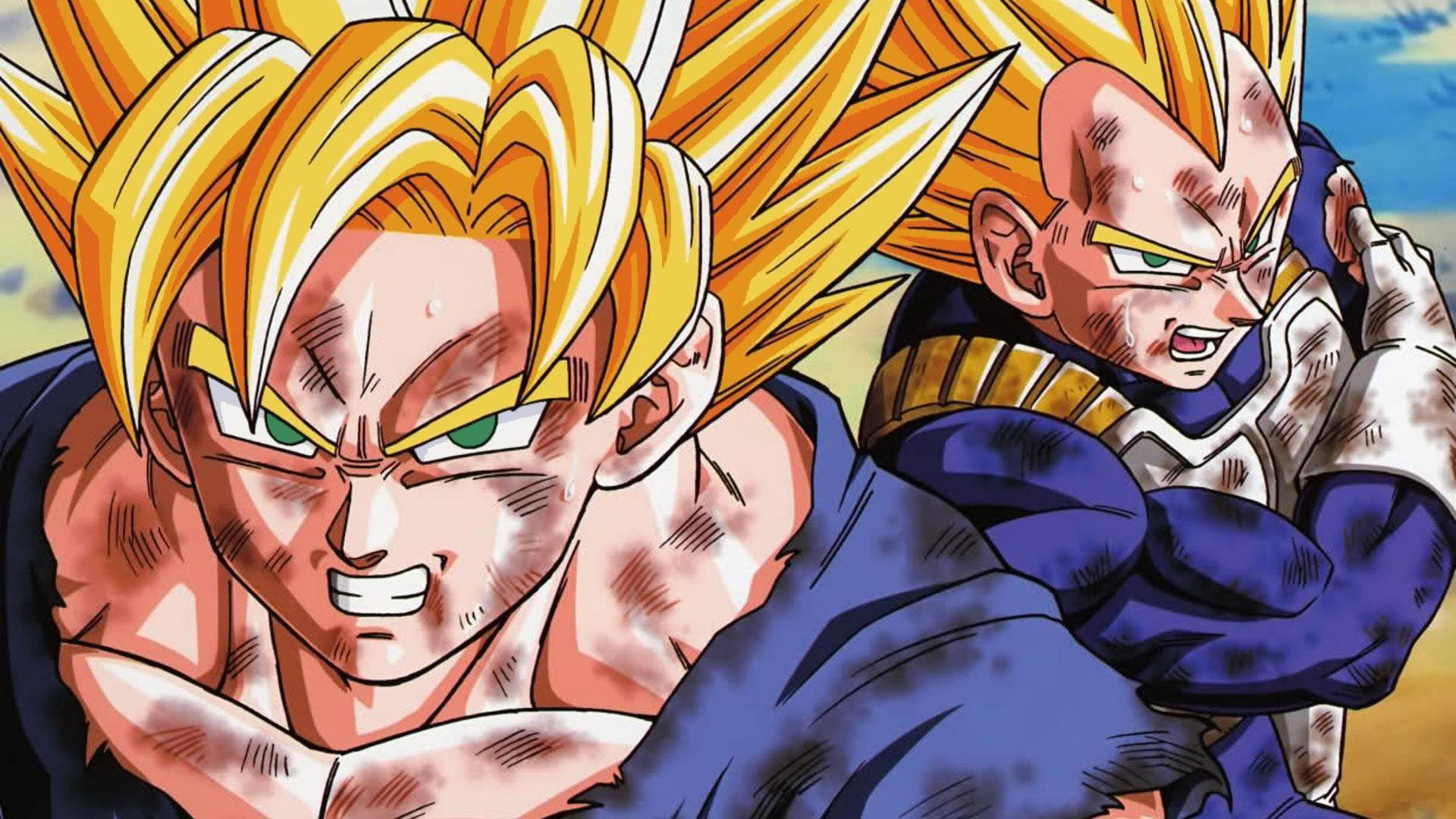 Free Goku And Vegeta Fusion Wallpapers Goku And Vegeta Fusion Backgrounds Goku And Vegeta Fusion Images Comput Dragon Pictures Dragon Ball Z Goku And Vegeta