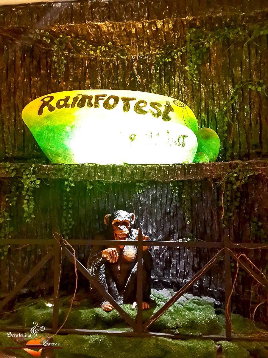 Animal Kingdom - Rainforest Cafe Bar by SpreadTheMagic, via Flickr ...