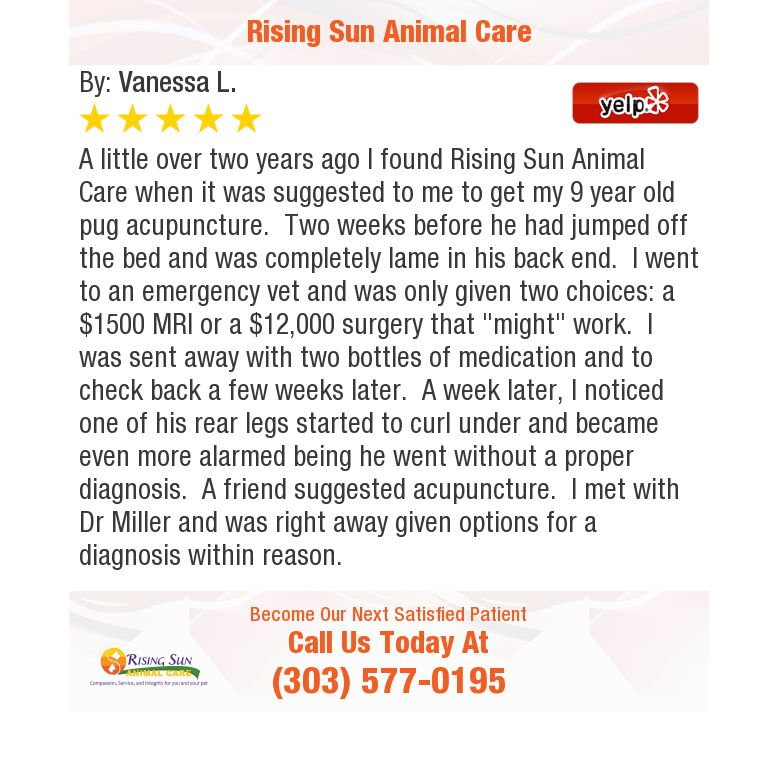 A little over two years ago I found Rising Sun Animal Care
