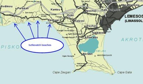 Turtlewatch beaches in akrotiri uksba akrotiri uk cyprus turtlewatch beaches in akrotiri uksba limassolcyprus gumiabroncs Image collections