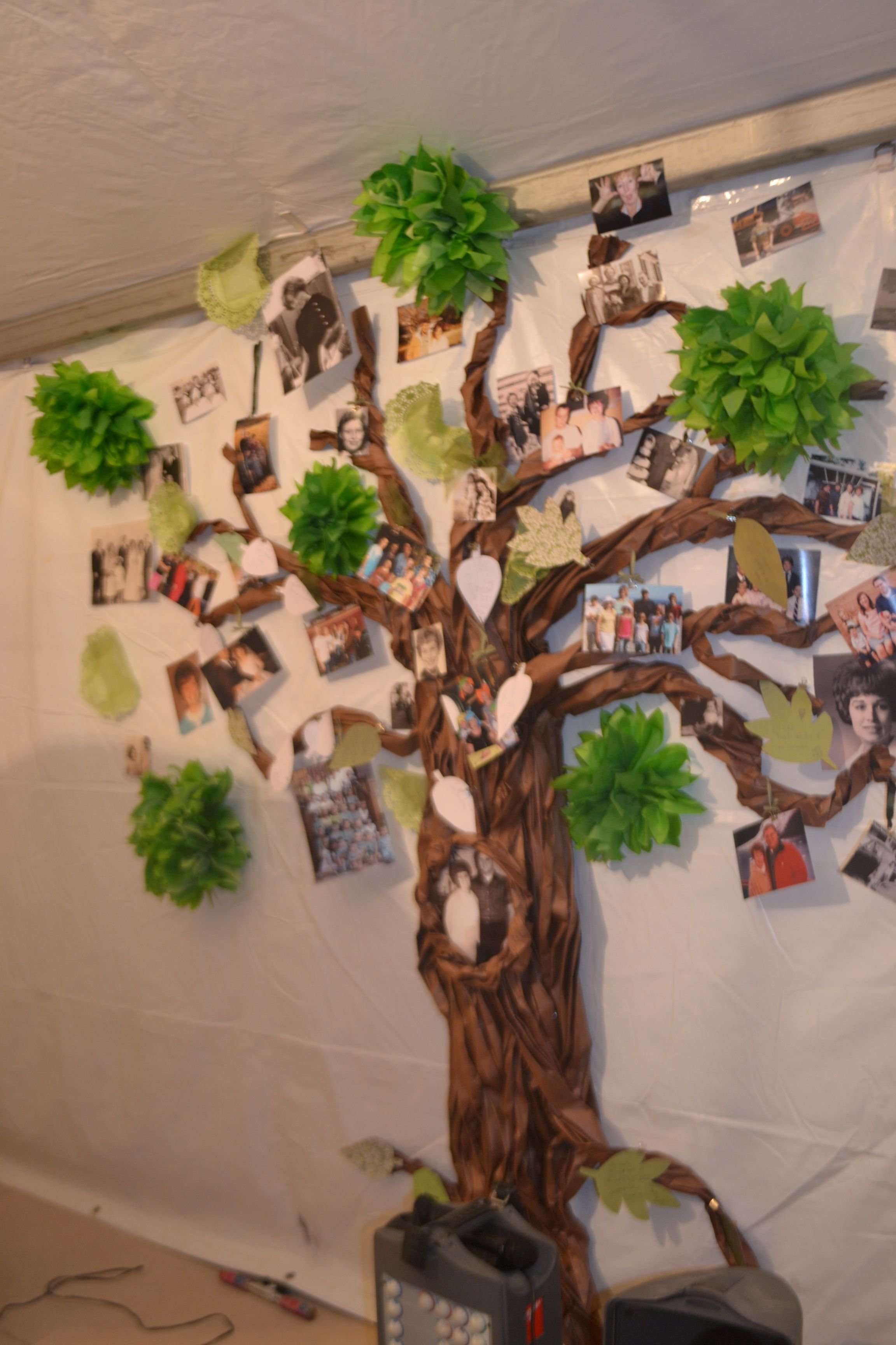 Family tree butcher paper twisted trunk tissue paper for Tree trunk slice ideas