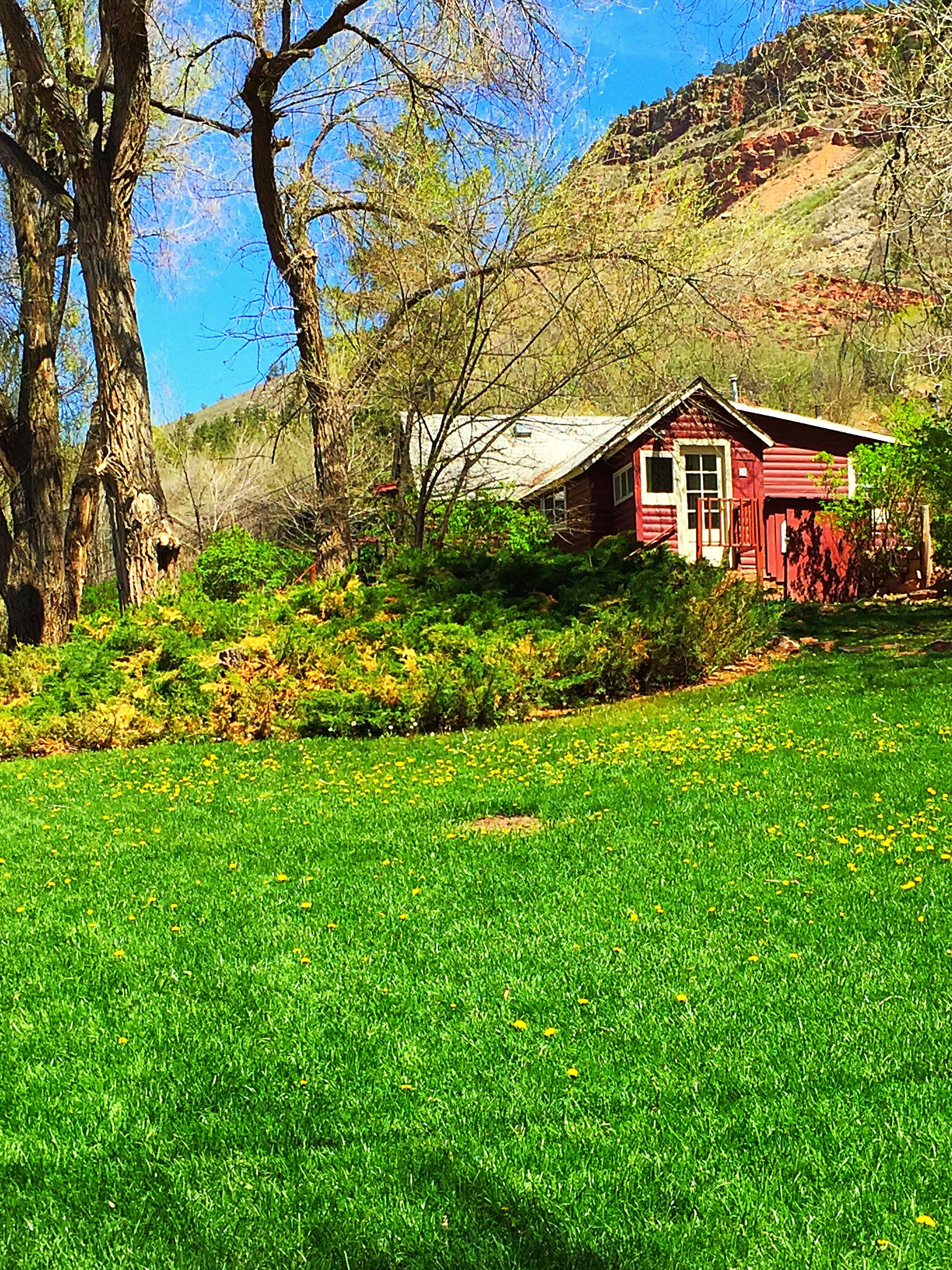 Stone Mountain Lodge in Lyons, Colorado. Beautiful wedding