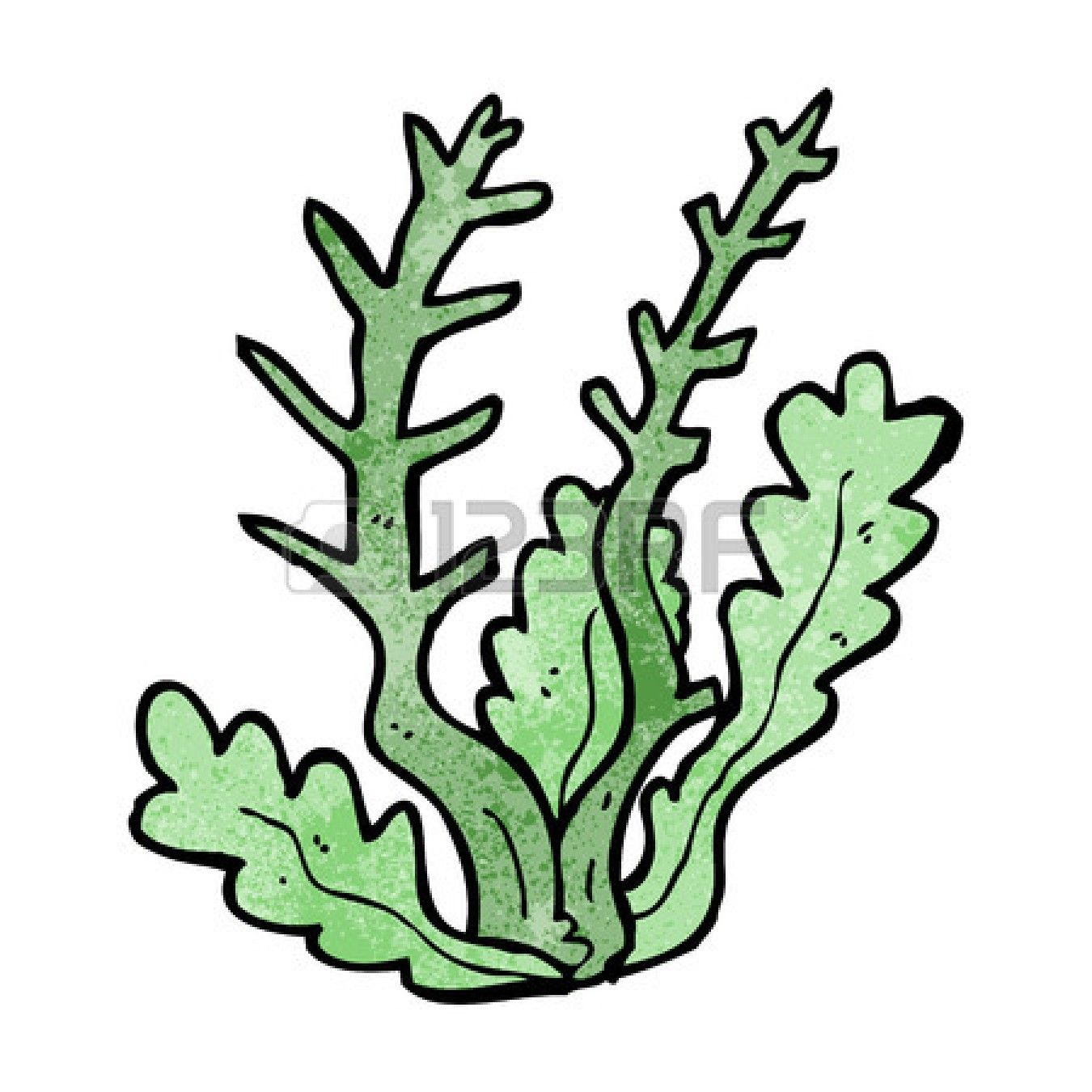 Sea Coral Clipart | Fish | Pinterest | Filing