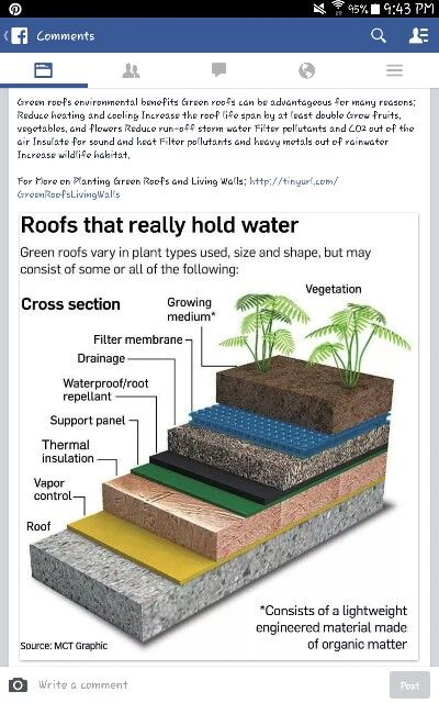 Roofs That Hold Water Reduce Heating And Cooling Costs Increase Life Of Roof And Create A Rooftop Garden Would Be Great On A S Green Roof Living Roofs Roof