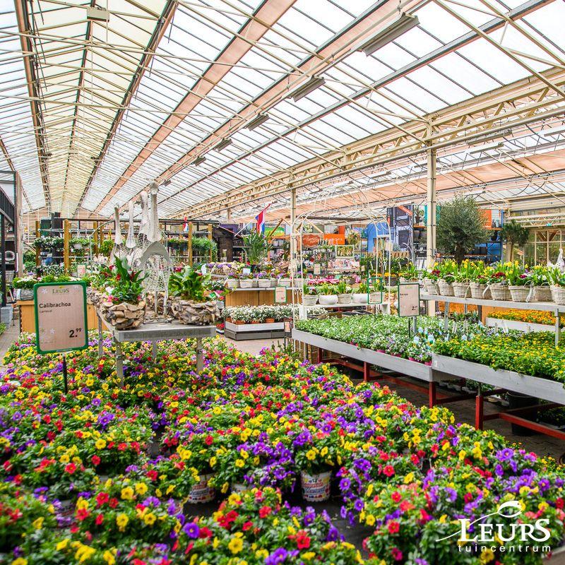 Sfeer beelden van de buiten afdeling @ Tuincentrum Leurs. | Tuincentrum, Buiten, Tuin inspiratie