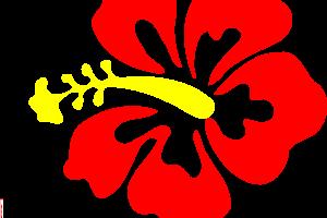 Paling Keren 30 Gambar Bunga Raya Merah Kartun Bunga Raya Vector Png 3 Png Image Download Vektor Bunga Images Stock Photos V Di 2020 Gambar Menggambar Bunga Bunga