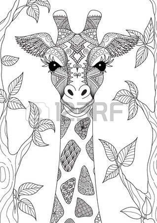 Zendoodle diseño de la cabeza de la jirafa en el bosque para el ...
