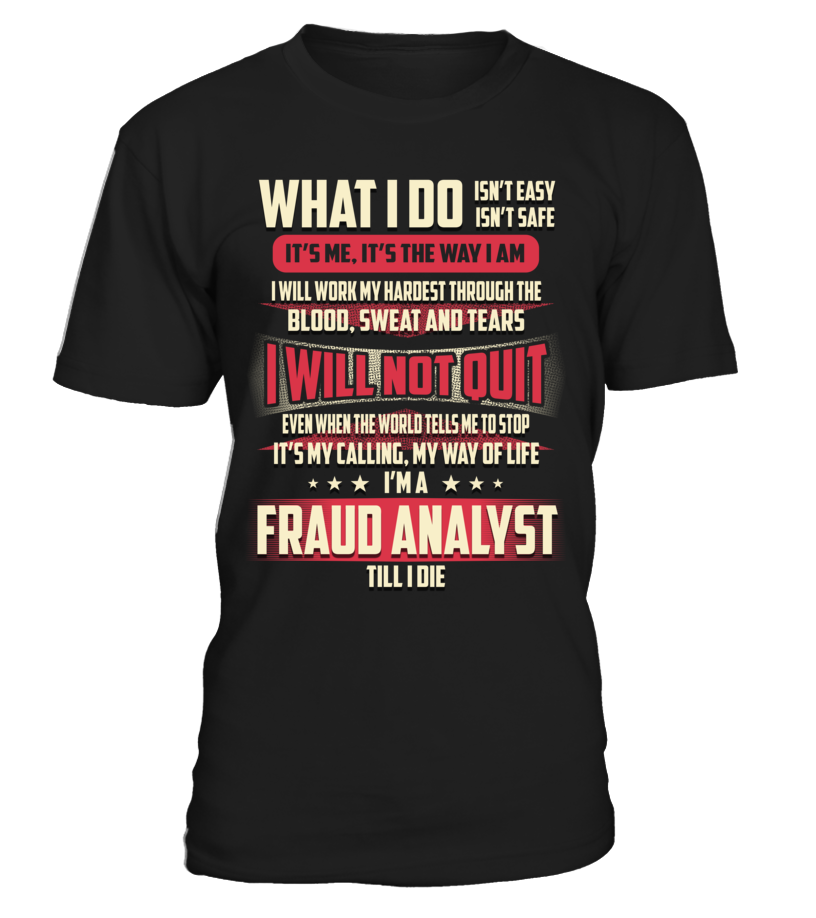 Fraud Analyst - What I Do