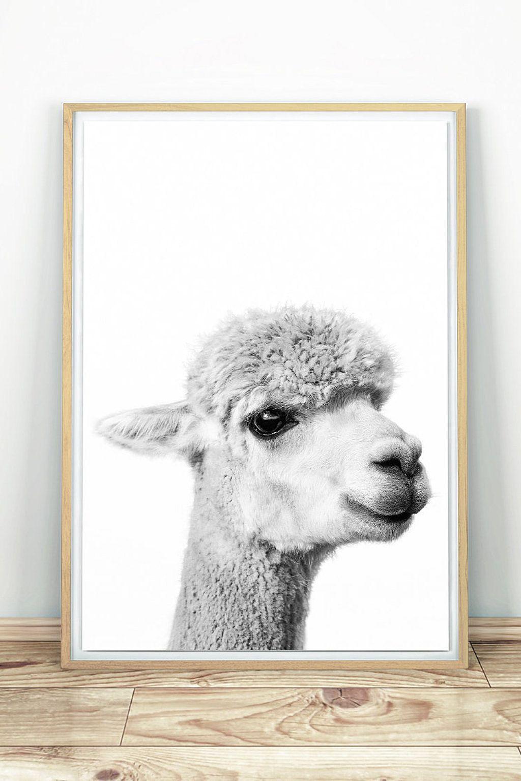 Alpaca print nursery printable poster alpaca wall art