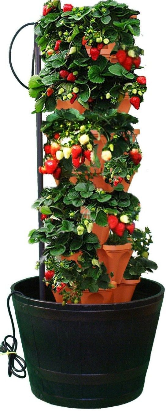 Pvc Strawberry Tower Vertical Pvc Strawberry Planter 400 x 300