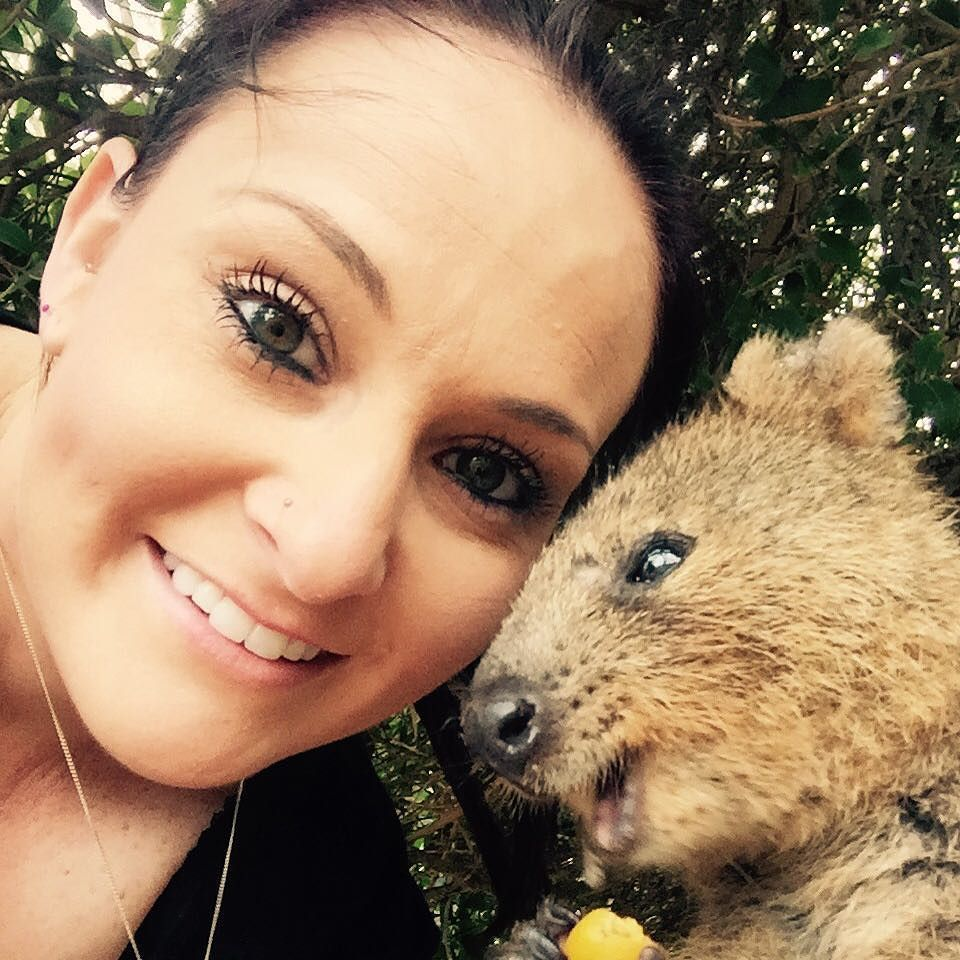 i got to take a selfie with the happiest animal ever quokka