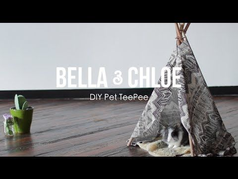 New DIY Video: Learn how to make your pet a teepee! #DIY #pet #teepee