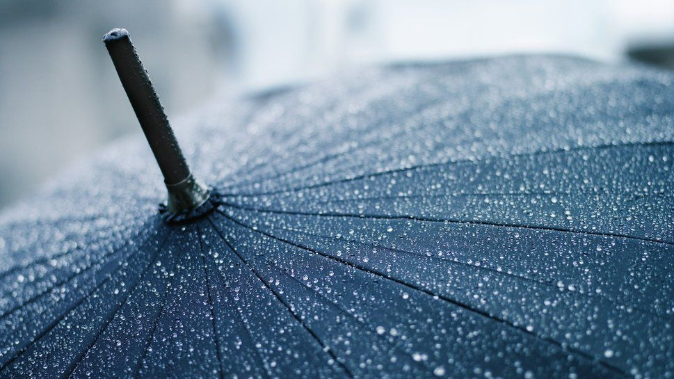 Macro Gouttes Rain Wallpapers Rain Photography Rain Drops