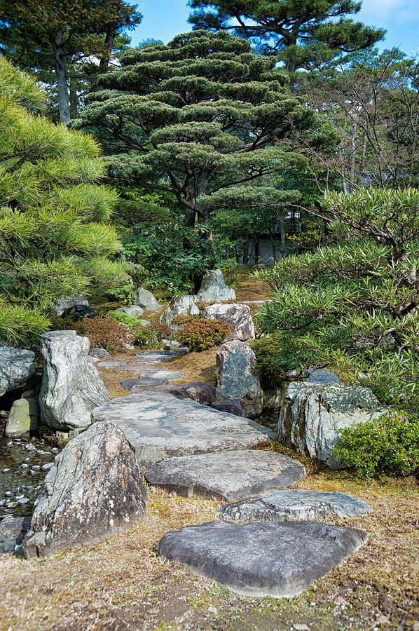 Zen Garden From Tokyo Imperial Palace By Zina Zinchik By Zina Zinchik Zen Garden Tokyo Imperial Palace Landscape Decor