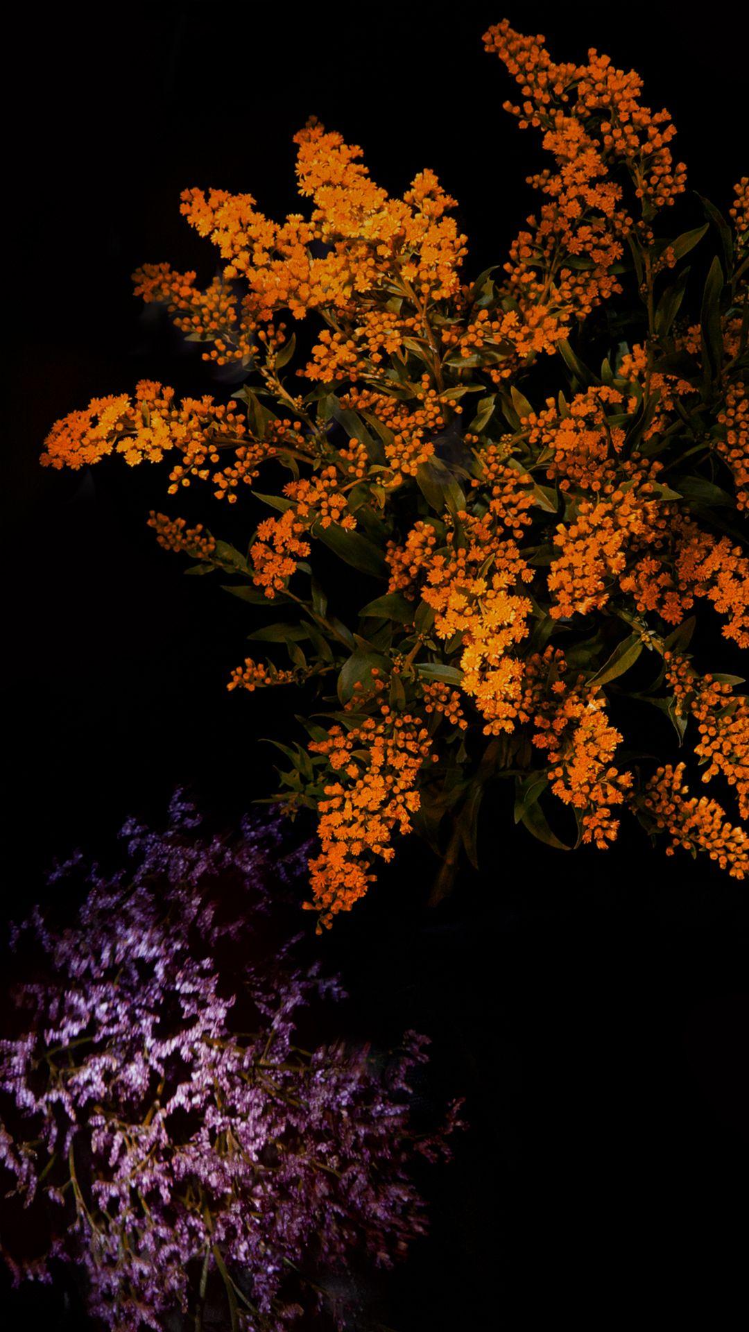 Fantasy Shiny Flower Tree Dark Ios9 Wallpaper Art Iphone 6 Wallpaper Download Iphone Wallpapers Wallpaper Iphone 4s Iphone 6s Wallpaper Art Wallpaper Iphone