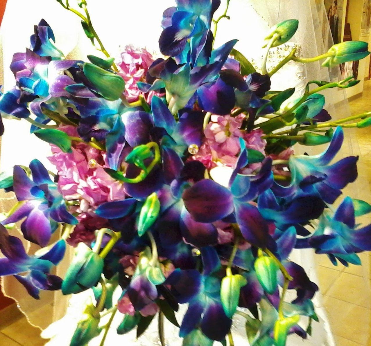 Dendrobium orchid bouquet stardust floral designs pinterest