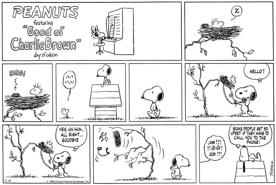 This strip was published on July 15, 1979. Snoopy and Woodstock.