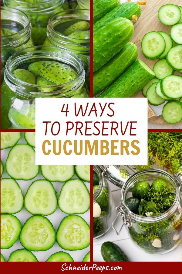 4 Easy Ways to Preserve Cucumbers by canning, dehydrating, freezing, and fermenting