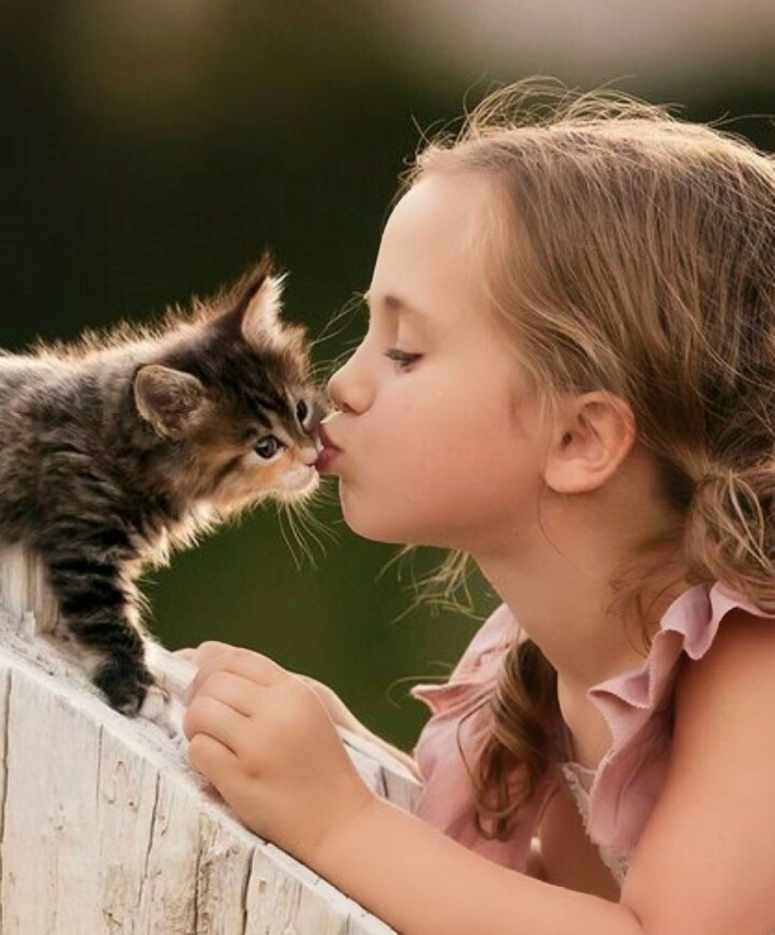 Pin By Marsha Brunet On Country Sweet With Images Cute Animals Kitten Love Animals For Kids