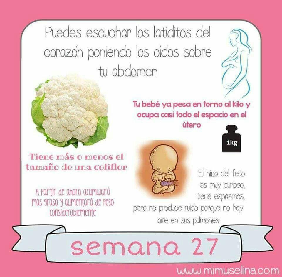 Pin De Marca La Diferencia En El Embarazo Semana A Semana
