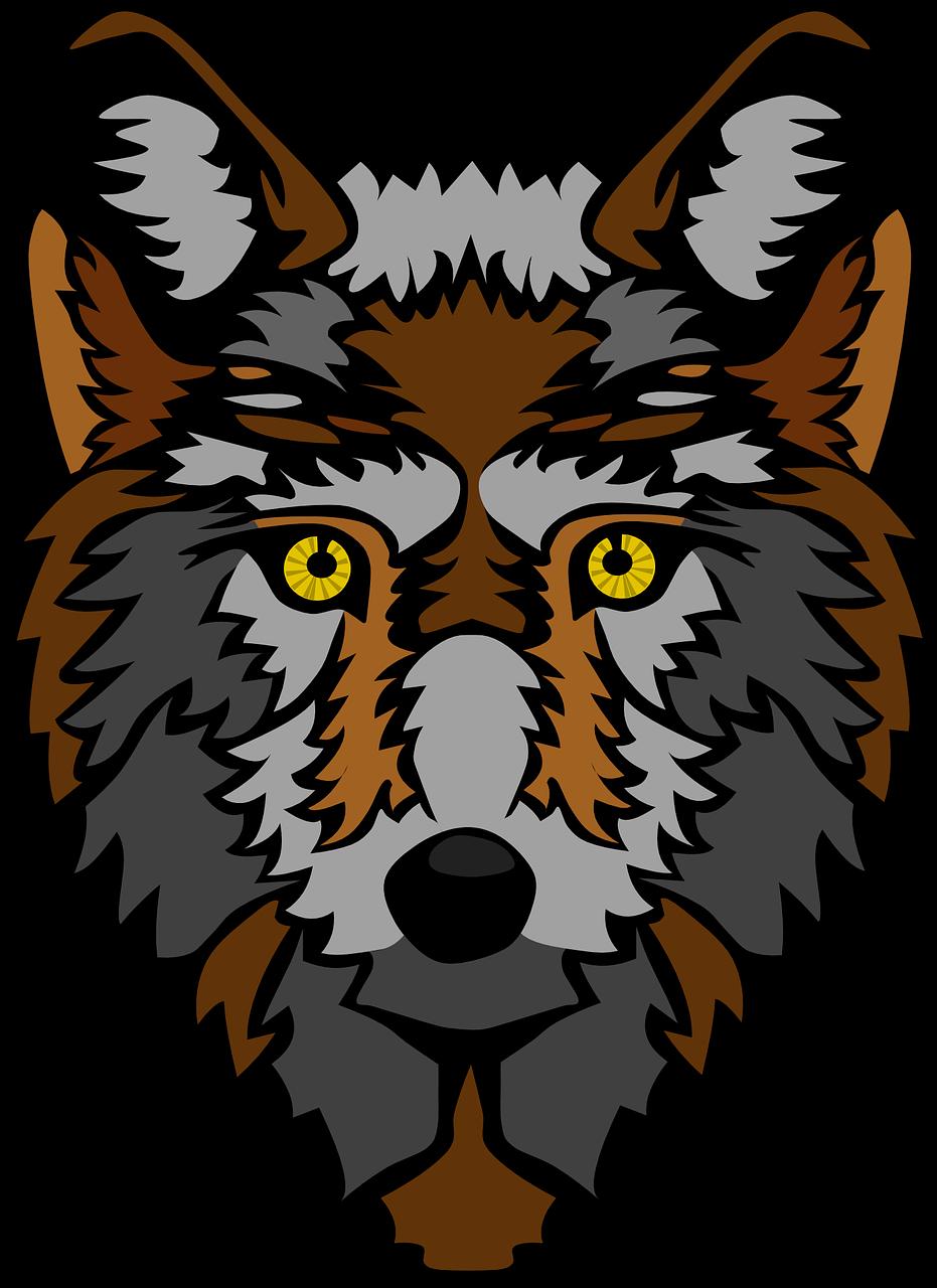 Wolf animal mammal fur wildlife transparent image wolf pinterest