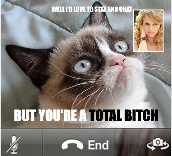 a130261011a404beae11b58d1b213e70 grumpy cat meme taylor swift google search grumpy cat,Busier Than A Meme