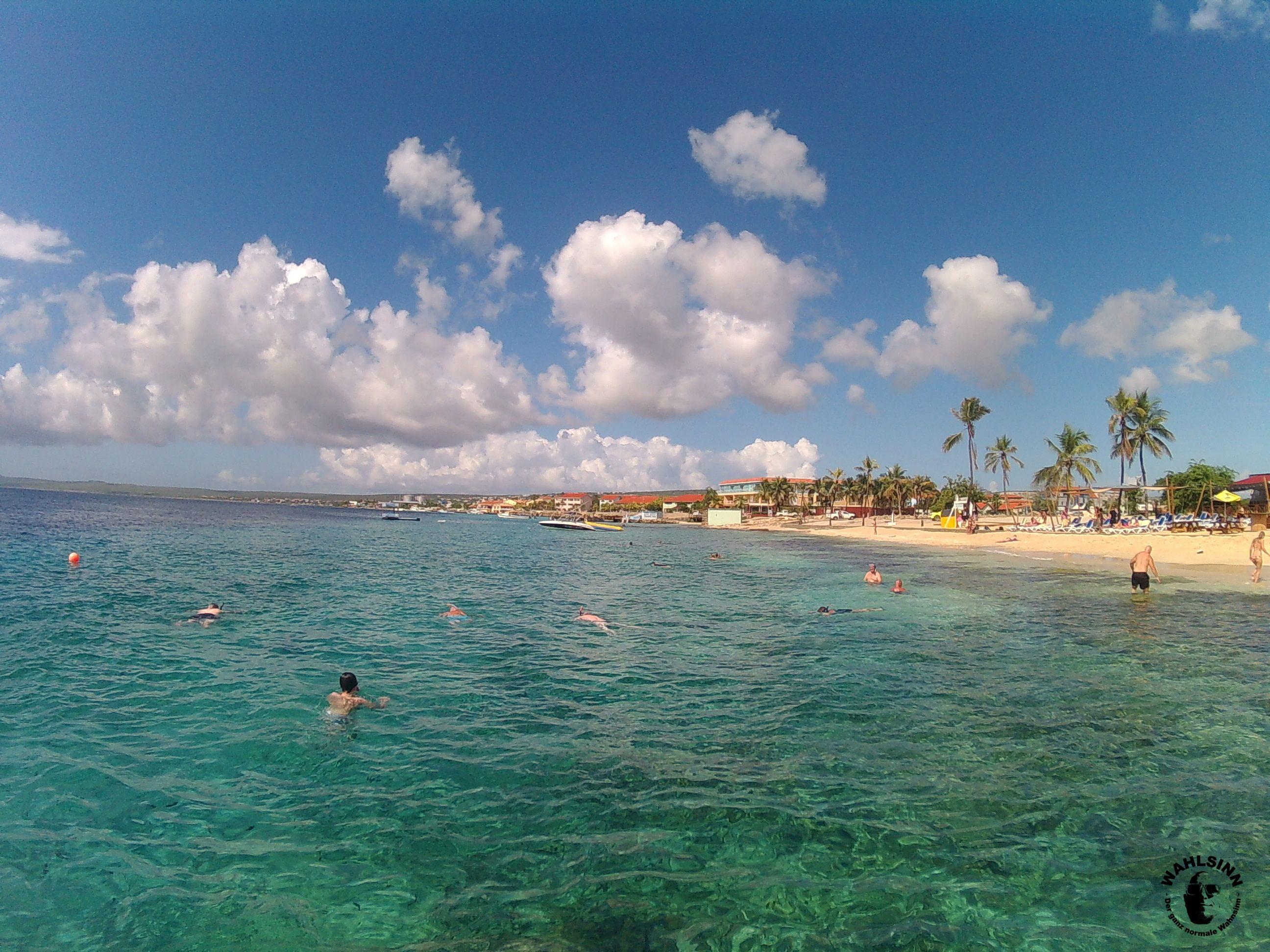 Bonaire - schöne Küstenlandschaft, kristallklares Wasser und eine Unterwasserwelt für Taucher und Schnorchler - dies und viel mehr bietet Bonaire in der Karibik