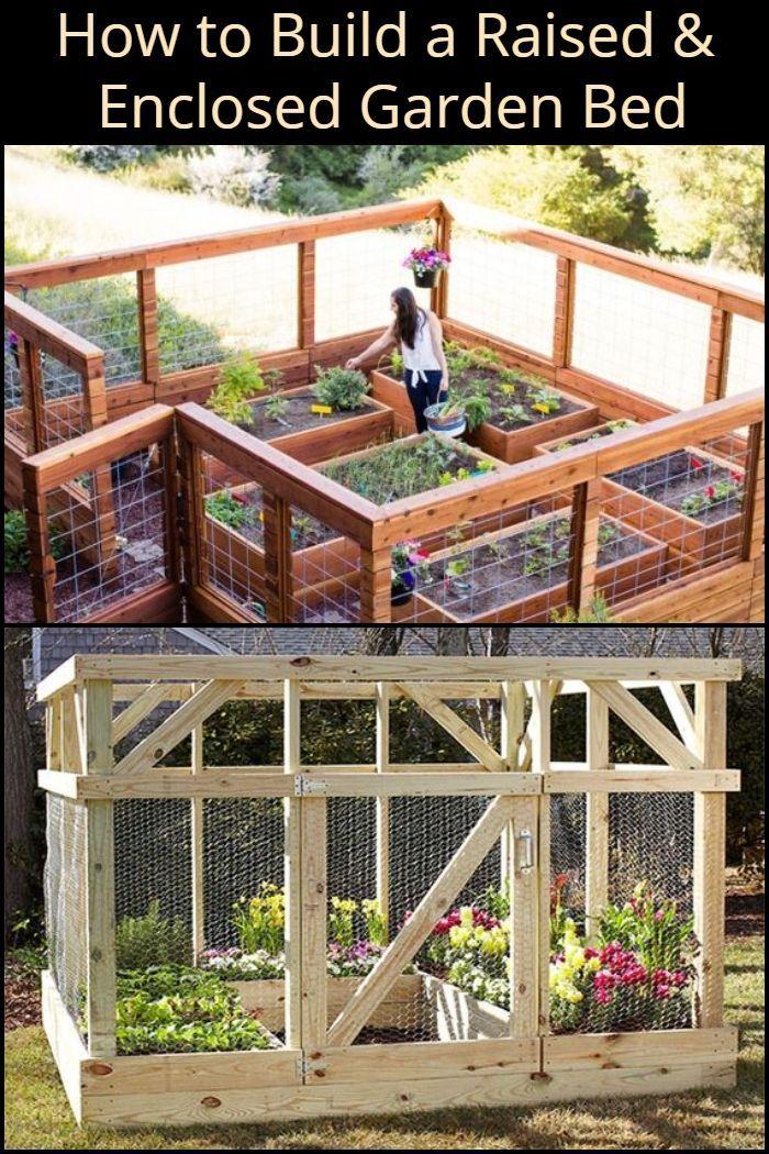 Build A Raised & Enclosed Garden Bed