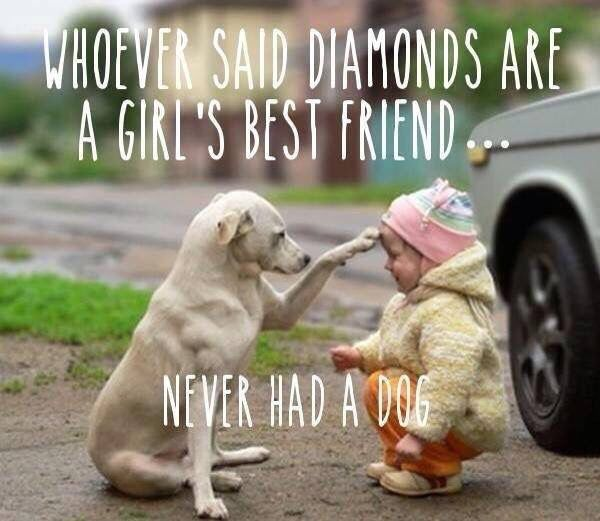Quotes About A Girl And Her Dog A Girls Bff Is Her Dog  Quotes And Inspiration  Pinterest  Bff .