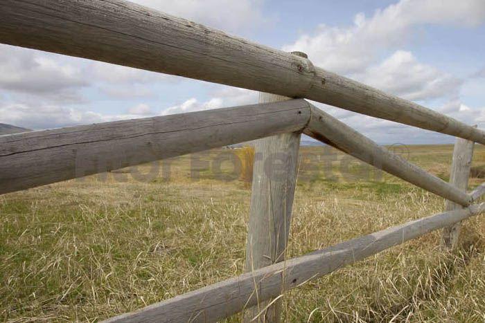 Talanquera de madera de una diagonal vallas de madera pinterest madera vallas de madera y - Verjas de madera para jardin ...