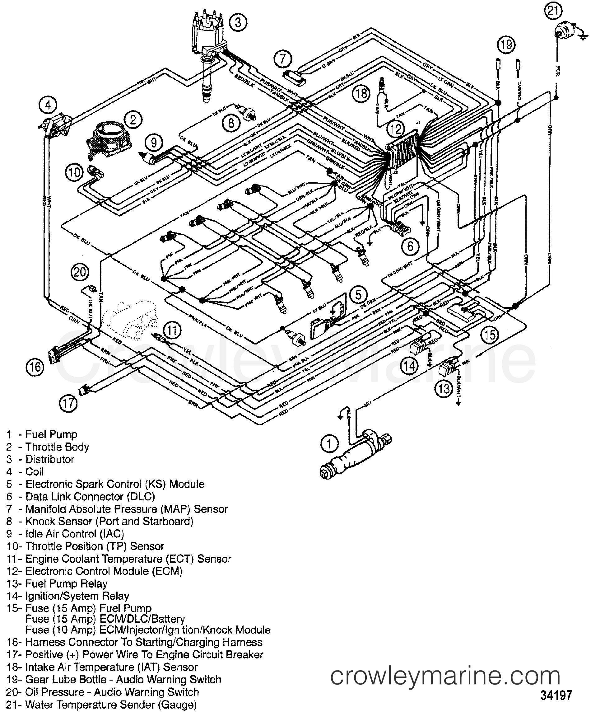 40 40 Mercruiser Engine Wiring Diagram   social publishe Use Wiring ...