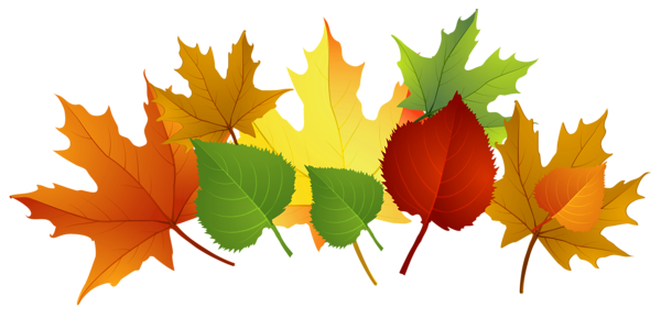 Fall Leaves Png Clipart Png 600 289 Fall Clip Art Fall Leaves Coloring Pages Fall Leaves Png