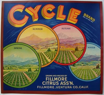ORIGINAL LEMON CRATE LABEL SELVA  SESPE CANYON FILLMORE VENTURA COUNTY 1940S