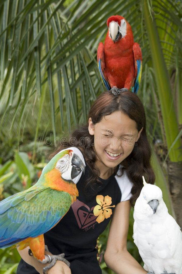 Child with beautiful parrots. In a zoo in Bangkok ,