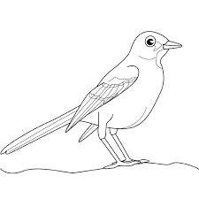 Resultado De Imagen Para Pajaros Azulejos Dibujos Dibujos De Pajaro Pajaros Dibujos